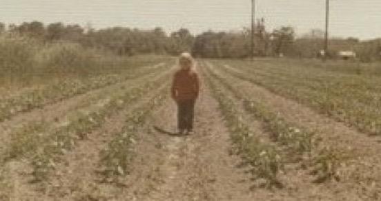 Donna Key Organic Gardener
